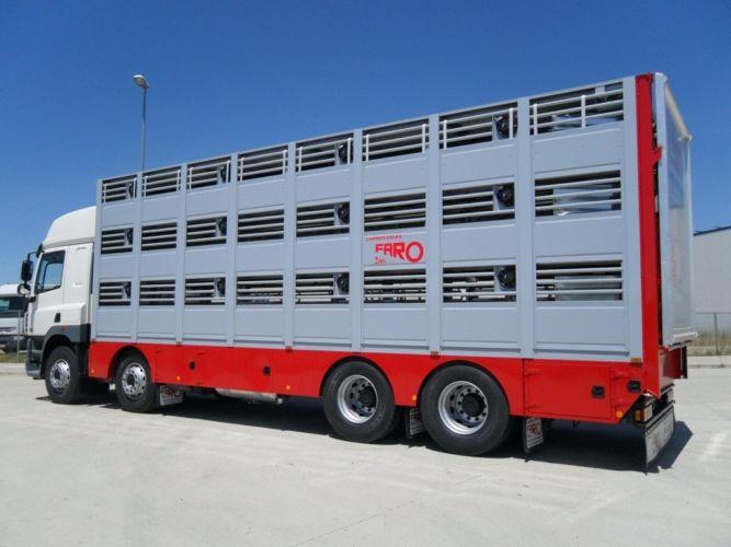 ganado-porcino-lanar